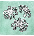 octopus set on old paper vector image vector image