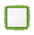 square leaves frame vector image vector image