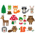 woodland animals isolated set vector image
