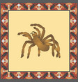 tarantula color in vintage square fra vector image vector image
