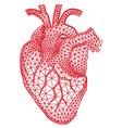 human heart with geometric pattern