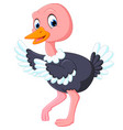 cute ostrich cartoon vector image vector image