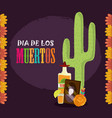 day dead photos frame tequila cactus vector image vector image