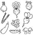doodle of vegetable art vector image vector image