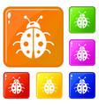 ladybug icons set color vector image vector image