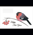 new year composition of a bullfinches rowan vector image