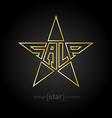 original Gold star with description sale vector image