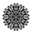 round boho black mandala on white isolated vector image
