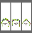 set of banners with bunches of grapes vector image vector image