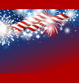 usa independence day 4th july design vector image vector image