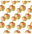 Watercolor Apple vector image vector image