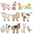 farm animal vector image vector image