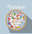 healthy food to fitness nutritions ingredients vector image vector image