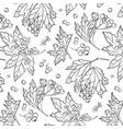 rowan berry pattern autumn white black cover vector image
