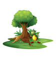 A turtle standing under the big tree vector image vector image