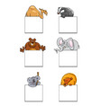 animals with cards or banners design set vector image
