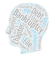 Bankruptcy Fundamentals text background wordcloud vector image vector image