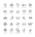 plant seed icon set vector image