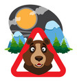 bear caution wild animals sign wildlife habitat vector image vector image