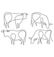 cow one line drawing vector image