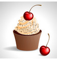 cupcake with cherry vector image vector image