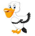 cute pelican cartoon vector image
