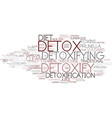 detoxify word cloud concept vector image vector image