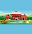farm animal at farmland vector image vector image