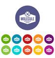 molecule life icons set color vector image vector image