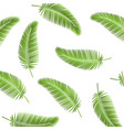 palm leaf seamless pattern background palm leaves vector image vector image