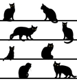 pattern with cats silhouettes vector image