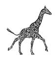 Running giraffe vector image vector image