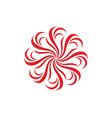 set of floral patterns on a white background vector image