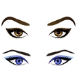Set of realistic cartoon female eyes and vector image vector image