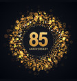 85 years anniversary isolated design vector image vector image