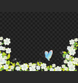 flowers and butterfly landscape on black vector image vector image