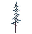 hight green pine silhouette fir-tree simple vector image