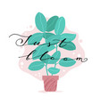 just bloom greeting card with rubber ficus in pot vector image vector image