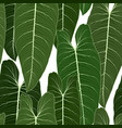 long big tropical green leaves seamless pattern vector image vector image