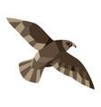 low poly falcon vector image vector image
