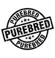 purebred round grunge black stamp vector image vector image