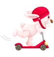 rabbit playing scooter vector image vector image