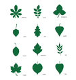 Set of silhouettes of leaves of different trees vector image vector image