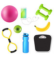 sport fitness set vector image