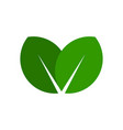 green leaf icon simple eco logo vector image