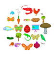 natural area icons set cartoon style vector image vector image