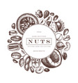 nuts wreath design hand drawn pecan macadamia vector image