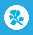 parsley icon colored symbol premium quality vector image