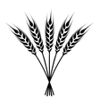 silhouette ears of wheat icon vector image