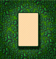 St Patricks Day Green background trefoil vector image vector image